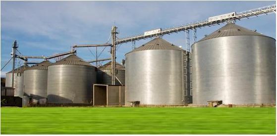 XXXIX ENTEC – Pós-Colheita: Estratégias para Redução de Prejuízos, da colheita à armazenagem, prejuízos invisíveis da pós-colheita