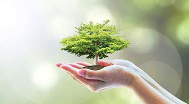XXXVIII ENTEC – Novo Código Estadual do Meio Ambiente