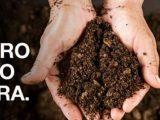 Massey Ferguson lança campanha 'O agro não para' nas redes sociais